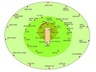 cricket field positions